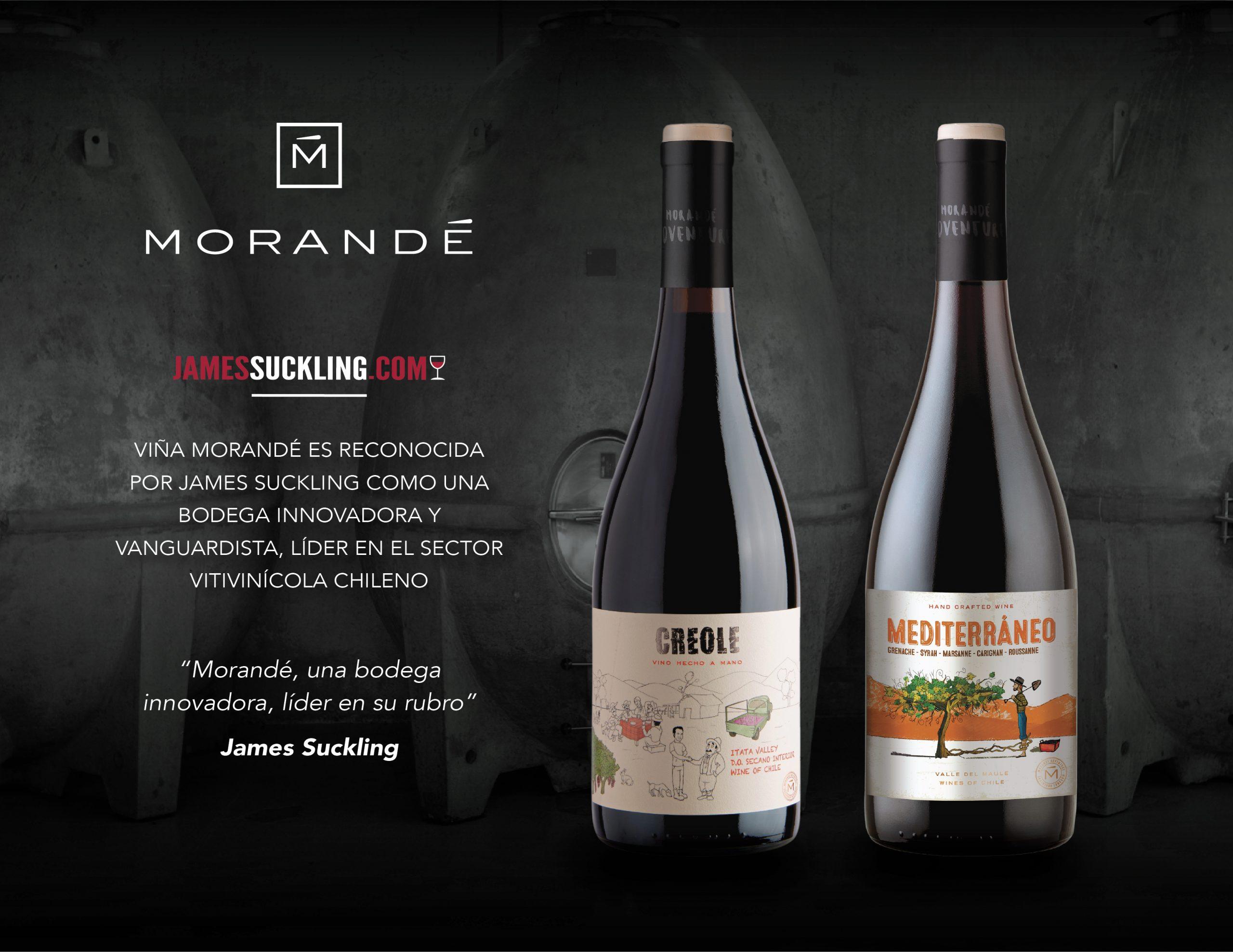 Viña Morandé es reconocida por James Suckling como una bodega innovadora y vanguardista, líder en el sector vitivinícola chileno