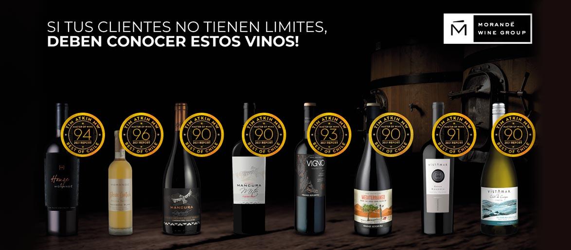Tim Atkin otorga excelentes puntajes a los vinos de Morandé Wine Group